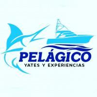 Pelágico Yates Acapulco