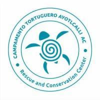 Ayotlcalli Turtle Camp