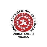 Sociedad Protectora de Animales de Zihuatanejo