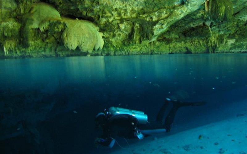 Queloniandivers Cenotes Tulum